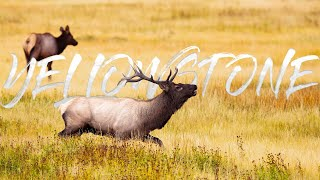 Travel Guide for Yellowstone I Planning Trip to Yellowstone National Park