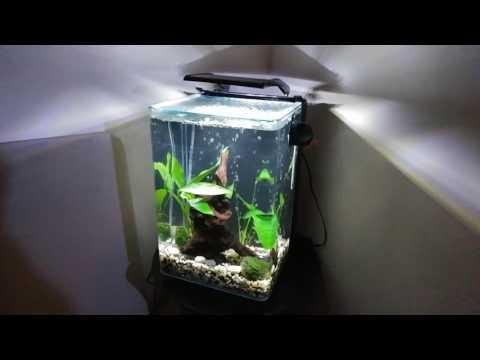 MARINELAND PORTRAIT 5 gallon fish tank