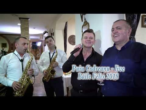 Puiu Codreanu – Live Baile Felix 2018 Video