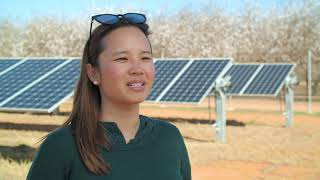 Bannerton Solar Park – integrating agriculture and solar generation