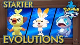 Pokémon Sword & Shield - All Starter Evolutions + Shiny Evolutions