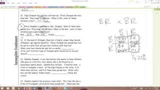 Answers - Oompa Loompa Genetics