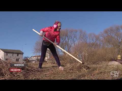 Жители района и города все чаще интересуются вопросами, связанными с озеленением территории и обрезкой деревьев