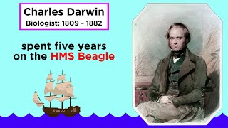 Charles Darwin's Idea: Descent With Modification