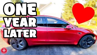 My Tesla Model 3 One Year Later Review | Would I Buy It Again?