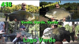 Festival de Tambaquis no Lago Verde - Fishingtur na TV 418