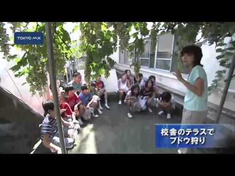 Kamishimmei Elementary School