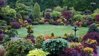 Best Ideas! - Top 80 Garden Small Backyard Landscaping | Beautiful Gardens Ideas