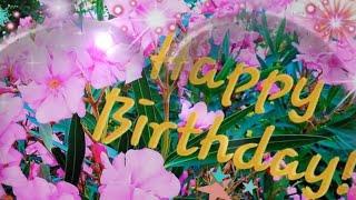 Gluckwunsche Zum Geburtstag Video Geburtstagsgrusse Kostenlos