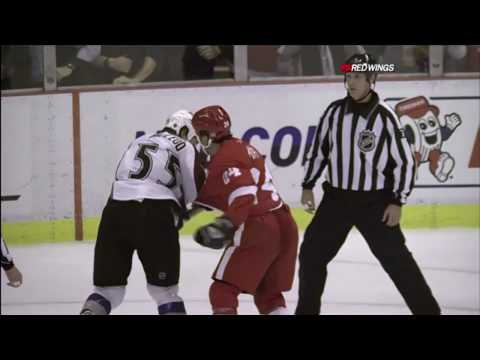 Brad May vs. Cody McLeod