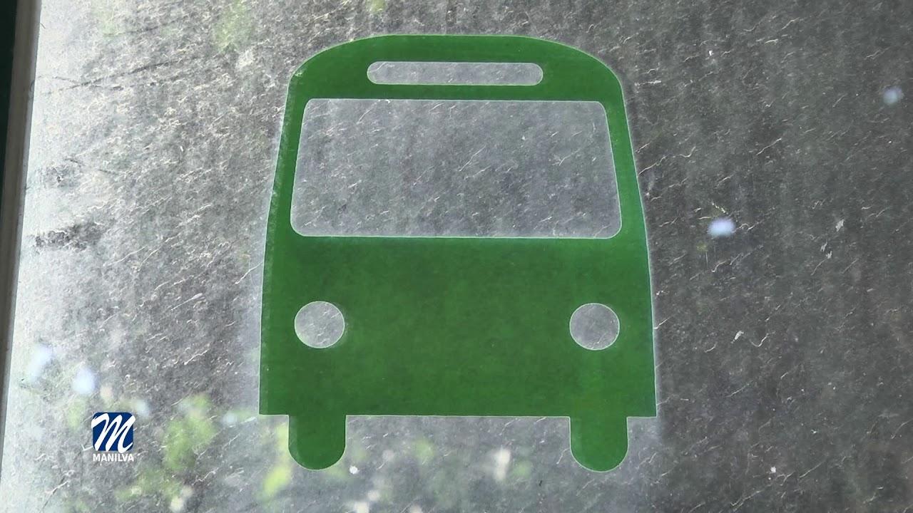 Vuelve a la normalidad el servicio de transporte local