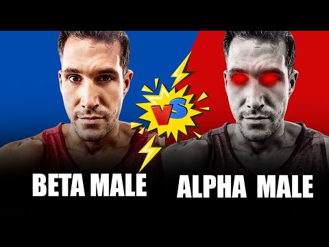How To Become A More DOMINANT MAN - Beta Vs. Alpha Male