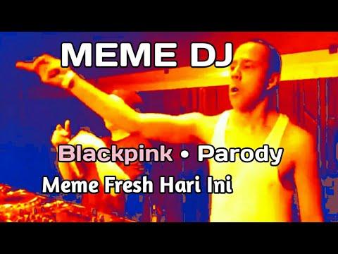 MEME DJ   🎵Blackpink (DDU DU DDU DU)🎵    PARODY