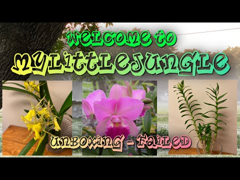 , title : 'More Orchids!||Unboxing - Failed