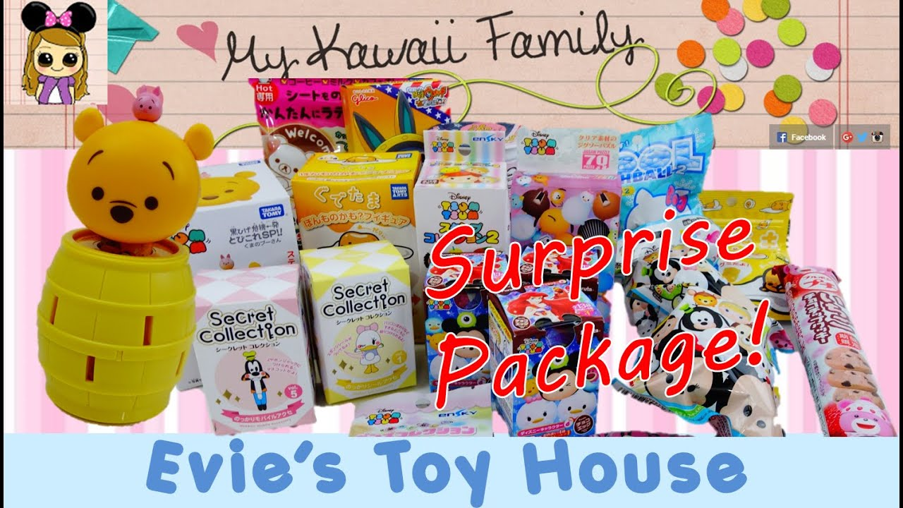 Huge Surprise Toy Package from My Kawaii Family with Tsum Tsum from Japan | Evies Toy House