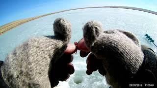 Рыбалка в хакасии на озере баланкуль