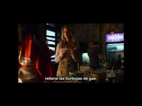 "Lost Girl, Lauren / Bo -""I trust You"" -  deshaciendo la temporada 2"