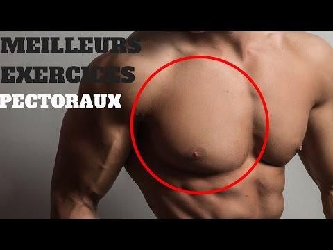 La douleur dans les articulations de lépaule le bodybuilding