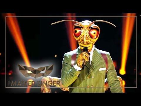 Shallow - Lady Gaga & Bradley Cooper   Grashüpfer Performance   The Masked Singer   ProSieben