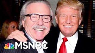 Former AMI Executive Discusses Relationship Between Trump And David Pecker | Hallie Jackson | MSNBC