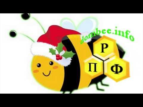 Поздравляю пчеловодов с Новым 2019 годом!!!