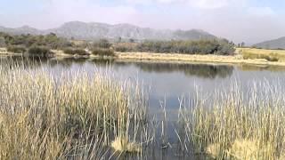 preview picture of video 'Laguna San Roque, San José de Jáchal, Argentina.'