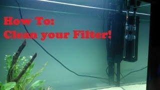 How To: EASILY clean an Aquarium Filter!