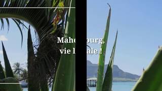 Lancement le 2 septembre de notre nouvelle activité Slow Travel à l'Ile Maurice !