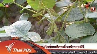ที่นี่ Thai PBS - นักข่าวพลเมือง : เพิ่มผลผลิตถั่วเหลืองเพื่อสร้างรายได้ (28 มี.ค. 59)