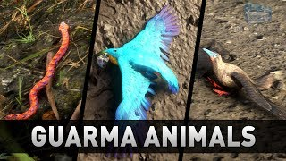Red Dead Redemption 2 - All Guarma Animals (Missable)