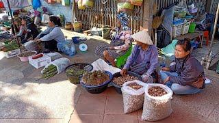 ตลาดช่องเม็ก จ อุบล เห็ดเผาะลาว ของป่าแนวแซ่บ ในช่วงฤดูฝน