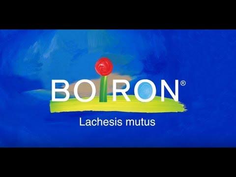 Boiron, Single Remedies, Lachesis Mutus, 30C, Approx 80 Pellets