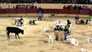 MESA DA TORTURA CARTAXO 2011