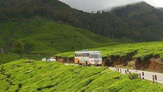 Munnar Kerala   Waterfalls   Tea garden   Dam   Fog   Spice garden