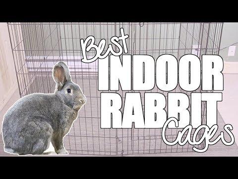 , title : 'Best Indoor Rabbit Cages
