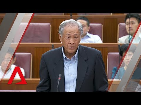 SAF to set up dedicated unit to drive and supervise safety culture: Ng Eng Hen