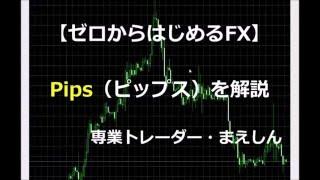 FXの用語を覚えよう!PIPS(ピップス)について解説。
