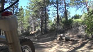 1. Ridgeline to end of Shevlin Park Rd: Deschutes NF Mrazek Trail 32