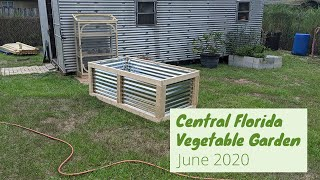 Central Florida Vegetable Garden | June 2020