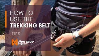 Non-stop dogwear Trekking Belt EN
