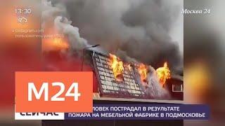 Один человек пострадал при пожаре на мебельной фабрике в Подмосковье – СМИ - Москва 24