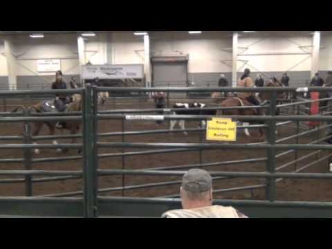 Ranch Sorting Clinic with Roger Braa Part 2