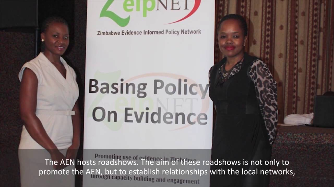 Africa Evidence Network: Building a community for EIDM in Africa