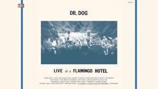 "Dr. Dog - ""The Rabbit, the Bat, & the Reindeer"" (Full Album Stream)"