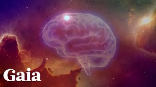 Connecting with Universal Consciousness | Gaia