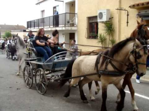 cavallada Bellcaire d'Empordà 2014