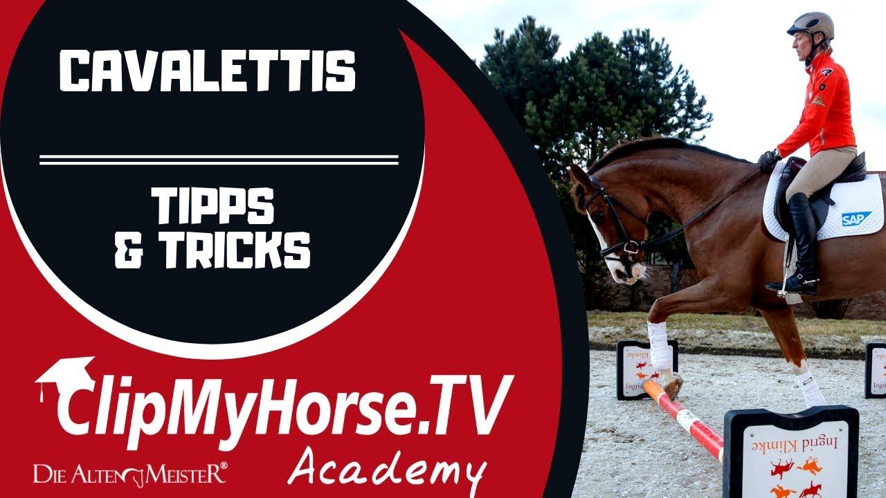 Video: Wie gewöhne ich mein Pferd an Cavalettis?