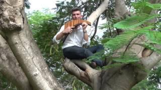 Music in Paradise - David Döring - Panflöte - Panflute - Flauta de Pan  |Panpipe