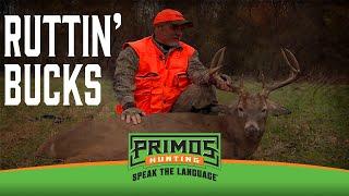 Ruttin' Bucks