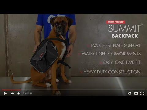 How To Fit A Dog Backpack - EzyDog Summit Backpack